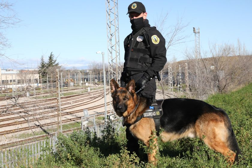 Metro de Madrid contrata a Security Dogs para frenar los actos vandálicos en sus trenes