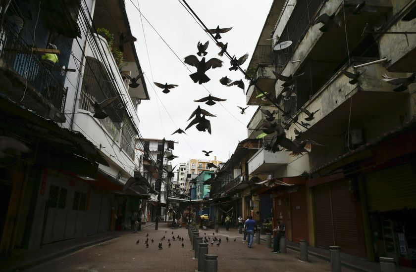 Pigeon fly amid the COVID-19 pandemic, in downtown Panama City, Tuesday, July 14, 2020. Given the sharp increase in the number of cases of COVID-19 infections and deaths in Panama, medical sectors are requesting to tighten up confinement measures in the capital and other areas with the highest infections. (AP Photo/Arnulfo Franco)